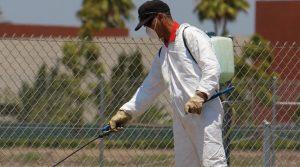 north Phoenix Pest control Service